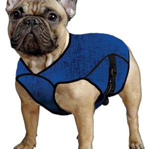 Aqua Coolkeeper® Cooling Dog Jacket