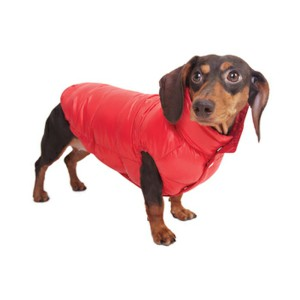 Coats for Dachshunds