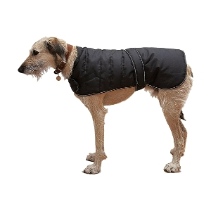 Coats (Traditional)