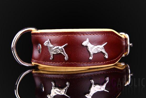 English Bull Terrier Leather Dog Collar
