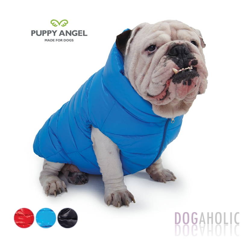 Designer Dog Coats In The Uk