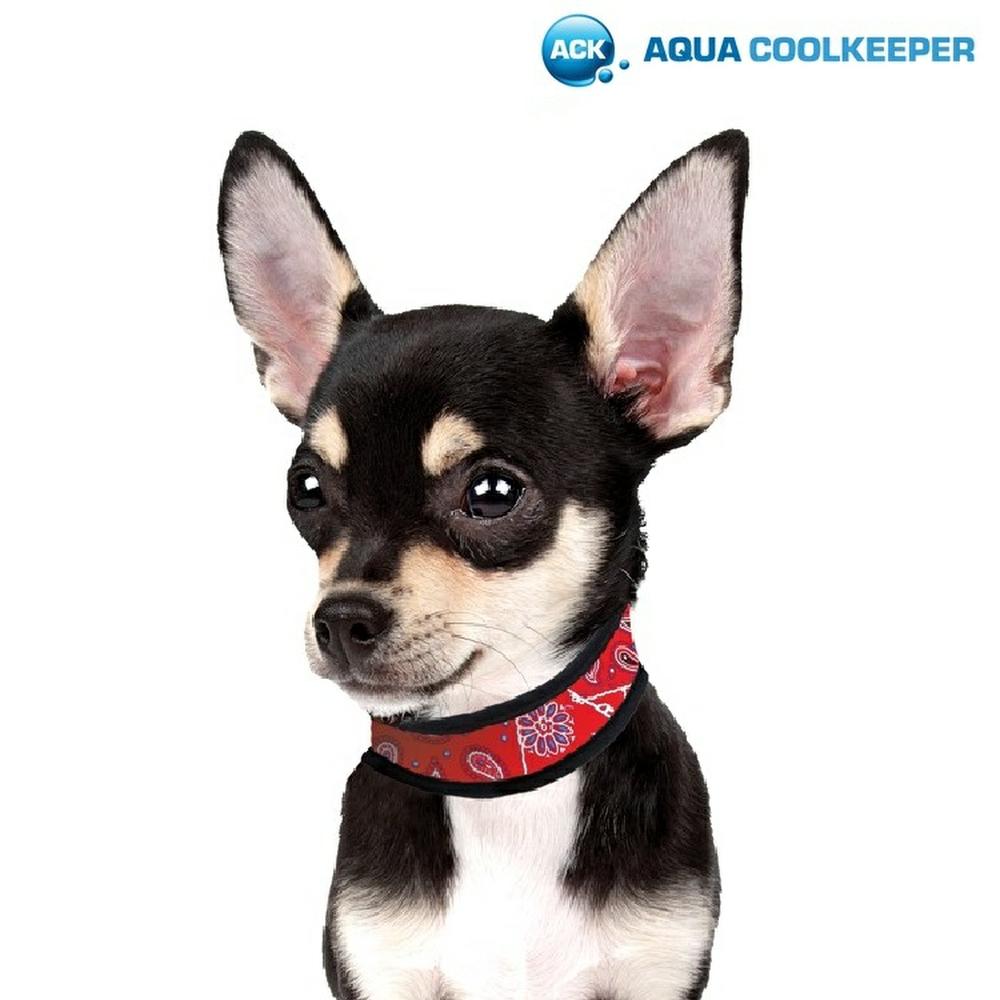 Aqua Coolkeeper 174 Cooling Dog Collar Dogaholic