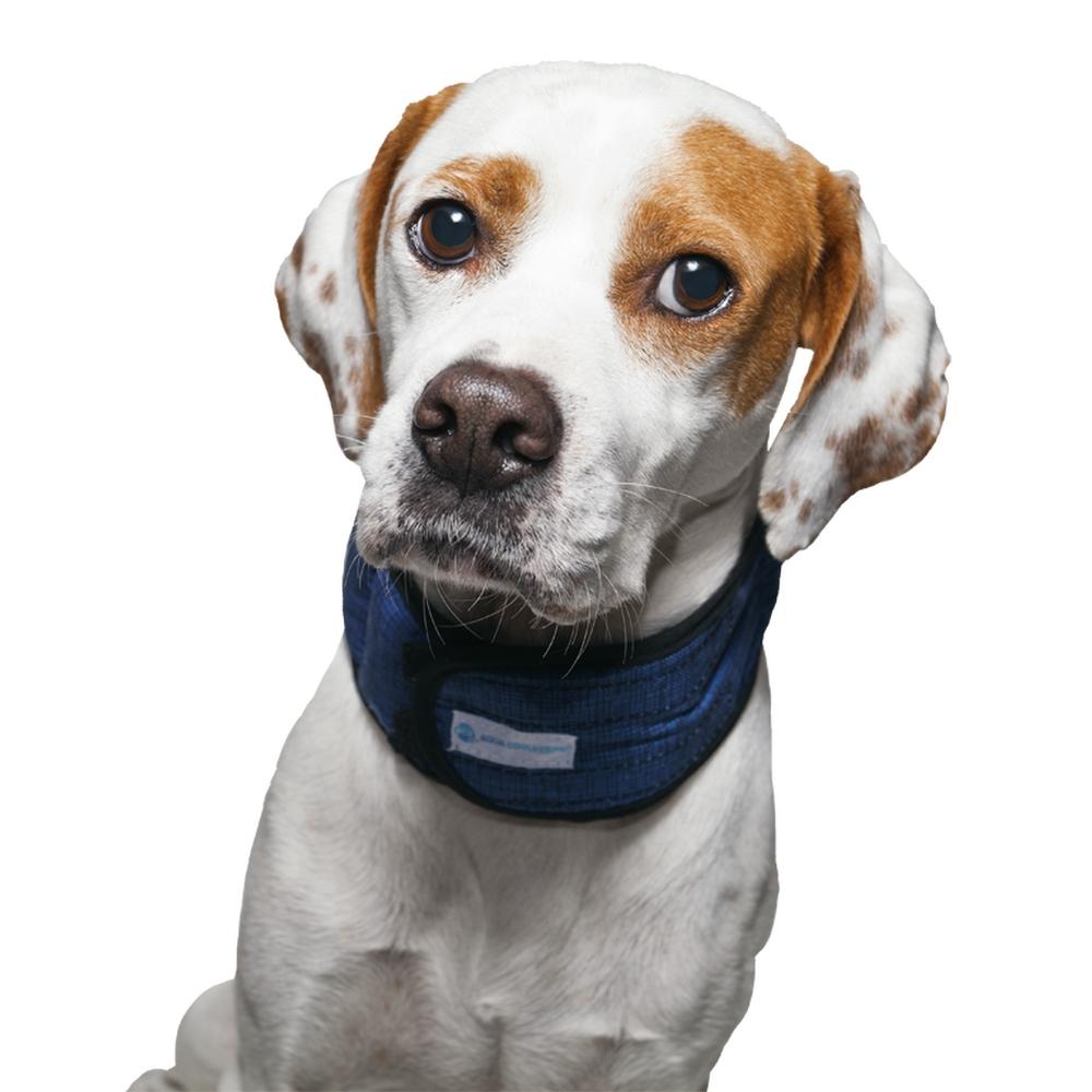 Dog Cooling Collar Uk