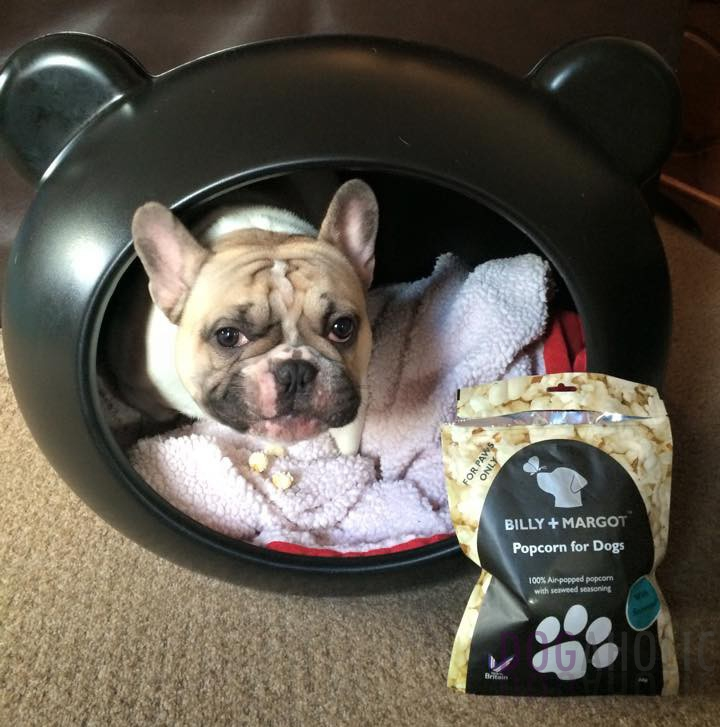 Popcorn for Dogs Seasoned with Seaweed