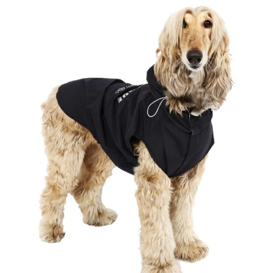 Lightweight & Waterproof Dog Coats