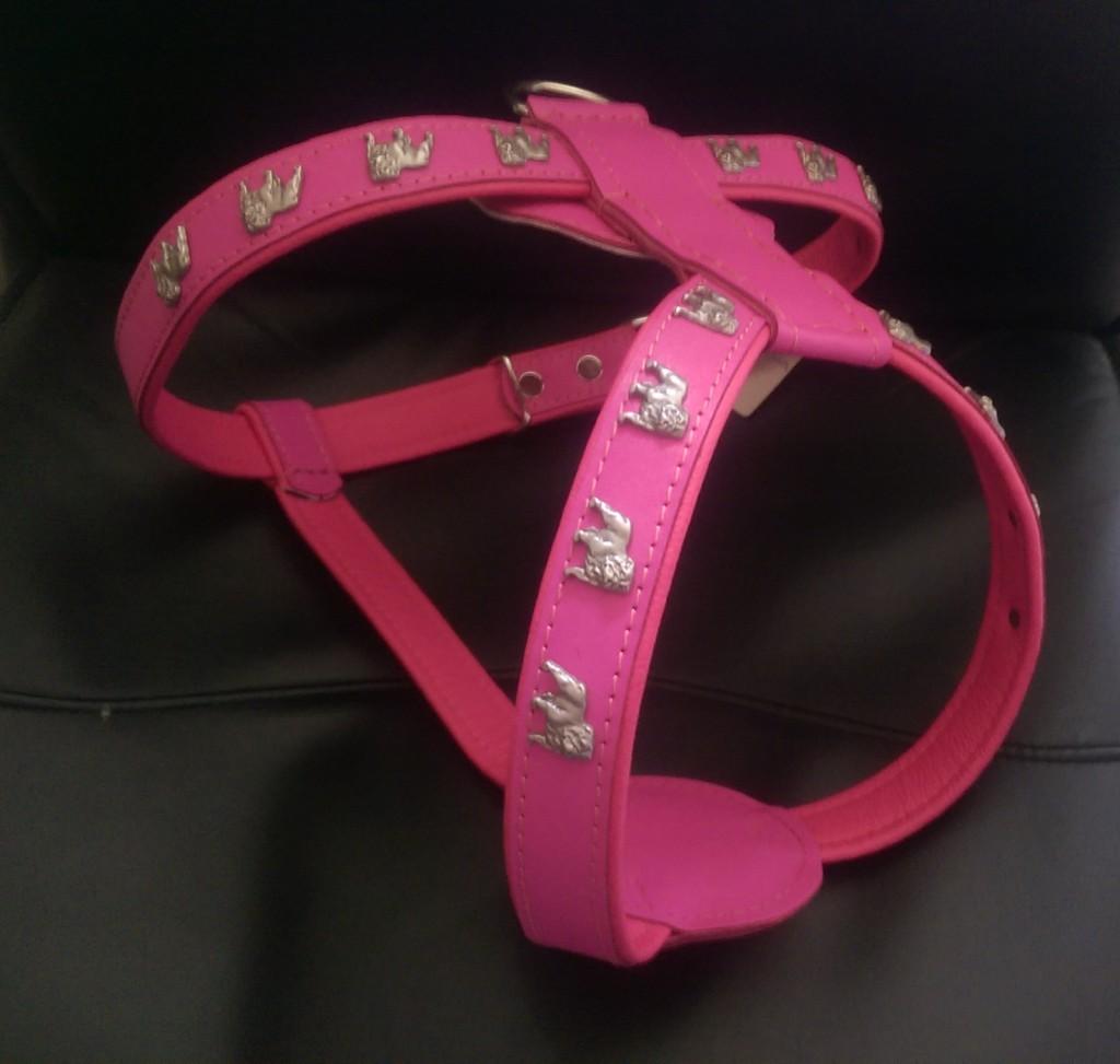 English Bulldog Leather Harness