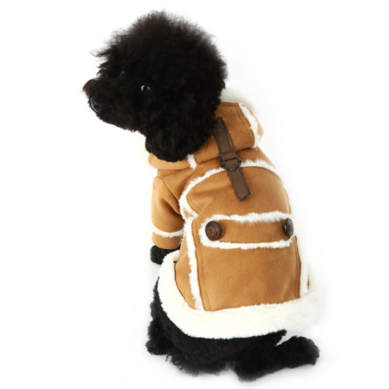 Fashionable Dog Coats