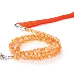 Fireball Leash - Orange