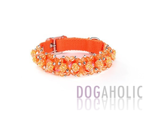 Fireball Collar - Orange