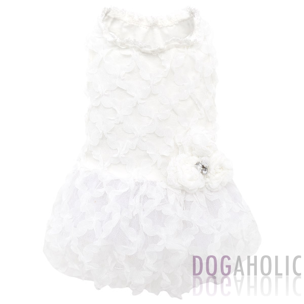 Wedding Outfits for Dogs