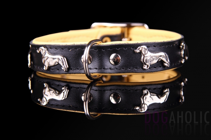 Dachshund Leather Dog Collar