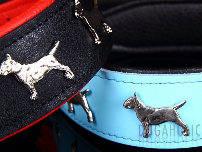 English Bull Terrier Leather Dog Collar