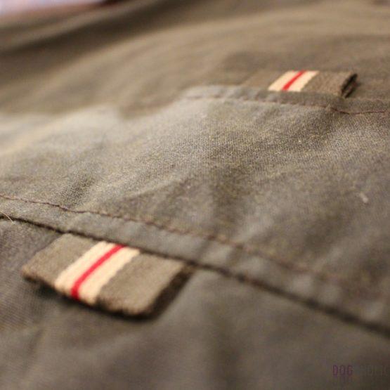 Windsor Jacket for Boston Terrier
