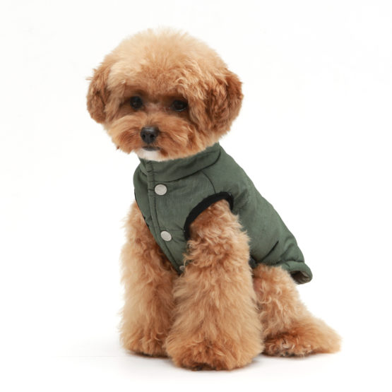 Small Dog Waterproof Coats