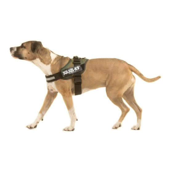 Julius K9 Harnesses