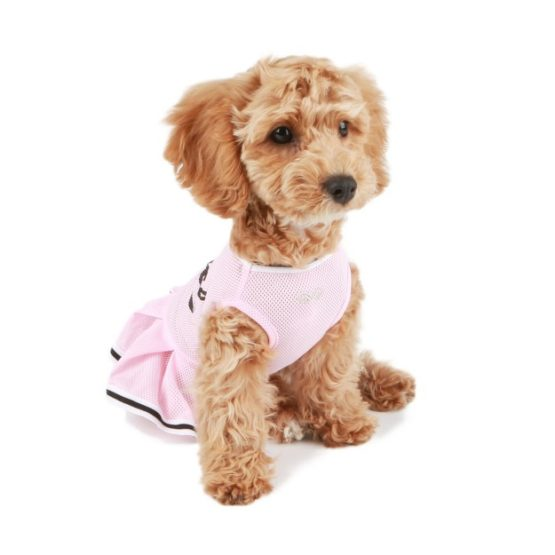 Small Dog Clothes for Girls