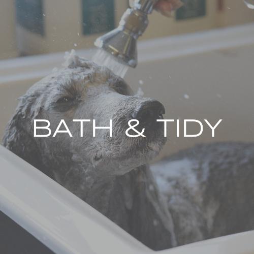 Bath & Tidy