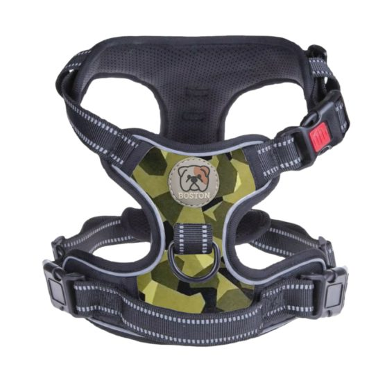 Boston Anti-Pull Dog Harness 2.0 - Green
